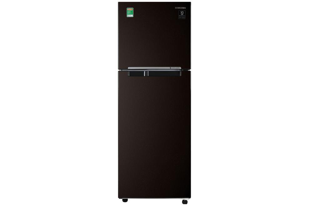 Tủ lạnh Samsung Inverter RT22M4032BY/SV - 236 lít