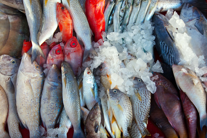 Các loại hải sản không những rất ngon mà còn cung cấp các khoáng chất thiết yếu giúp da luôn khỏe đẹp