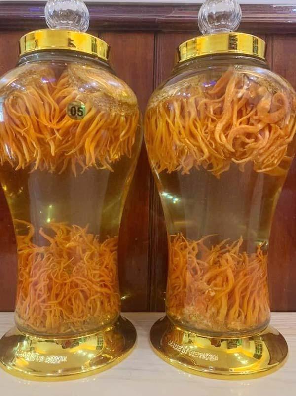 cách sử dụng đông trùng hạ thảo khô